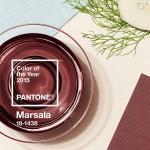 2015 Yılının Rengi: Marsala
